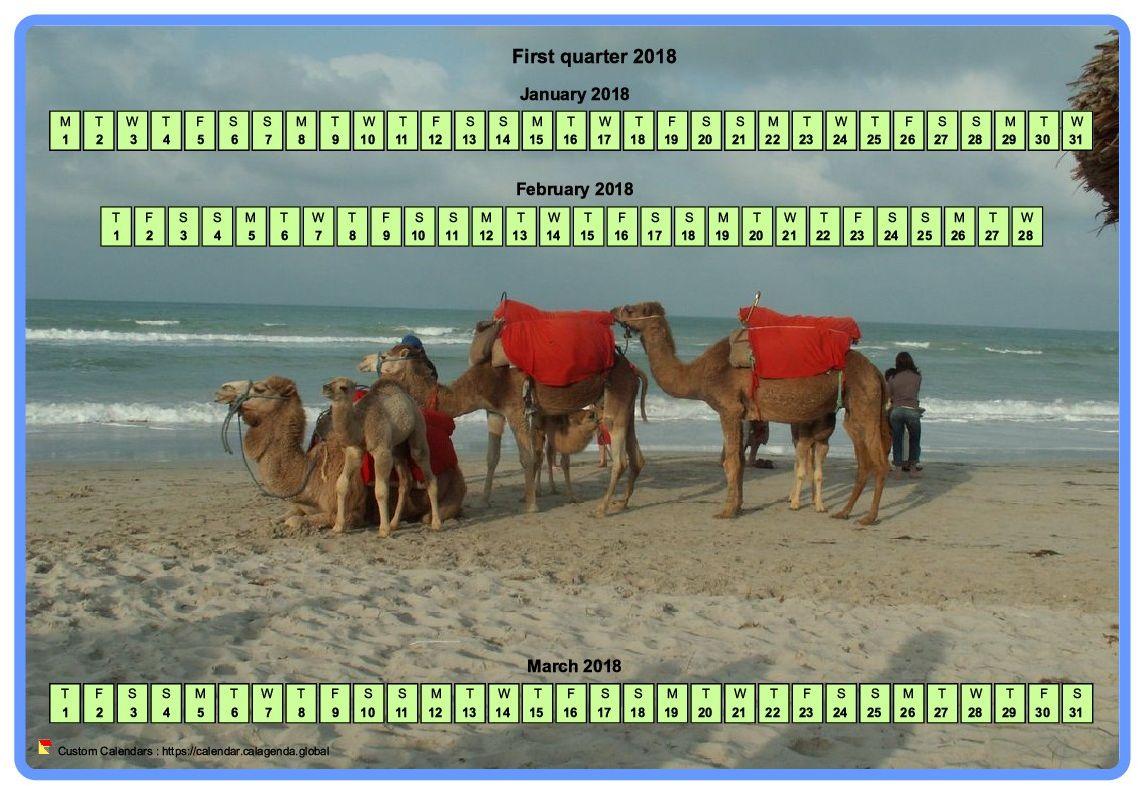 Calendar 2018 quarterly horizontal with a photo in calendar background