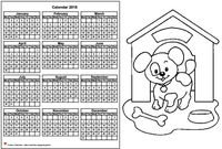 Annual coloring schedule 2018