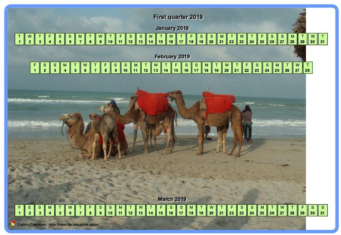 Calendar 2019 quarterly horizontal with a photo in calendar background