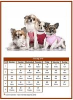 January 2019 calendar of serie 'dogs'