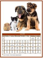 June 2019 calendar of serie 'dogs'