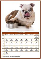 September 2019 calendar of serie 'dogs'