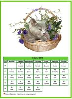 October 2019 calendar of serie 'Cats'