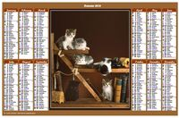 Annual 2019 calendar with cats