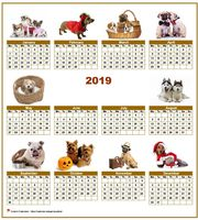Annual 2019 calendar with 10 pictures of dogs