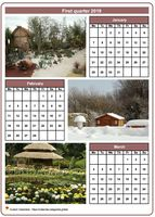 2019 quarterly calendar with one photo per month