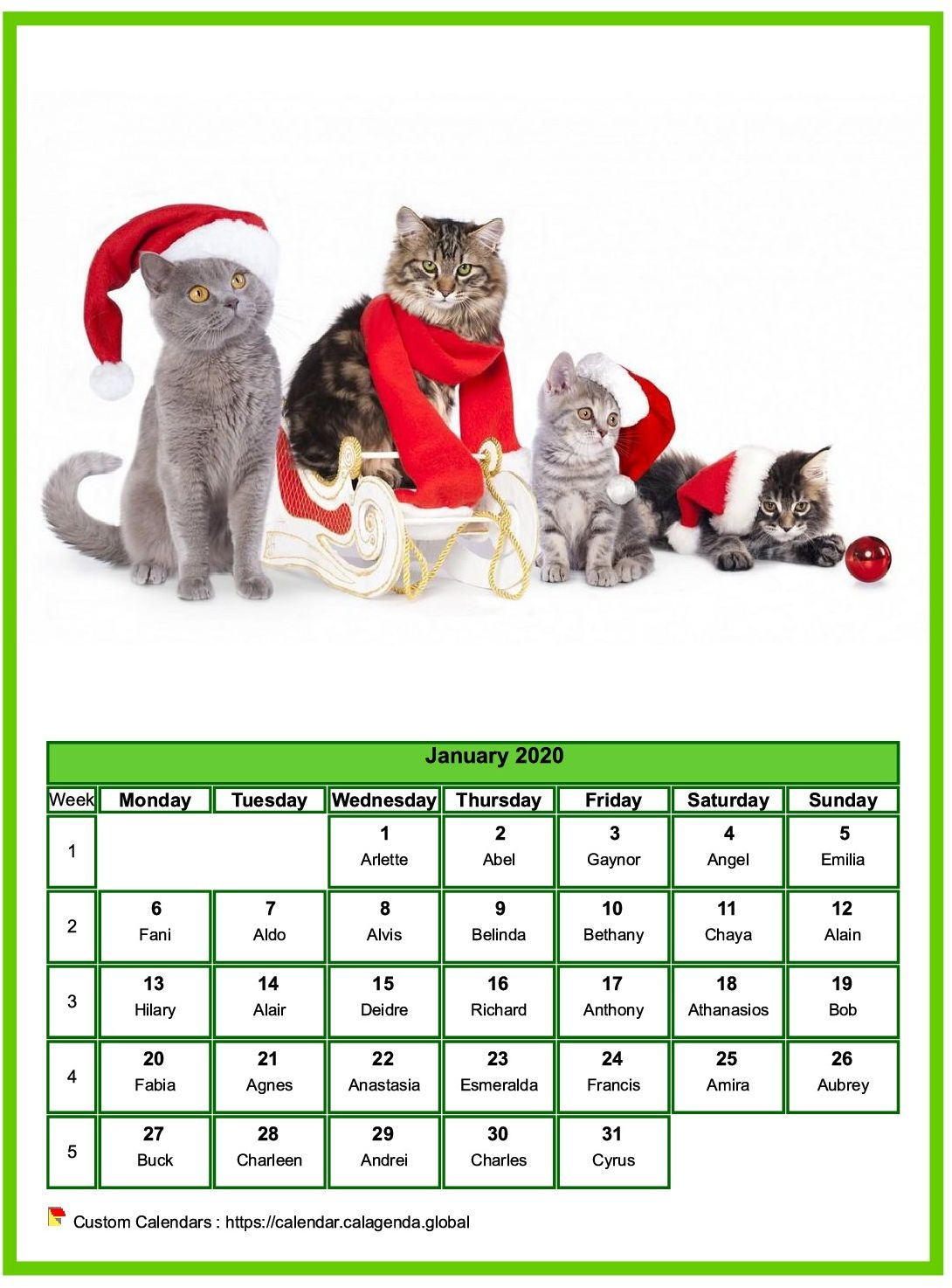 Calendar january 2020 cats