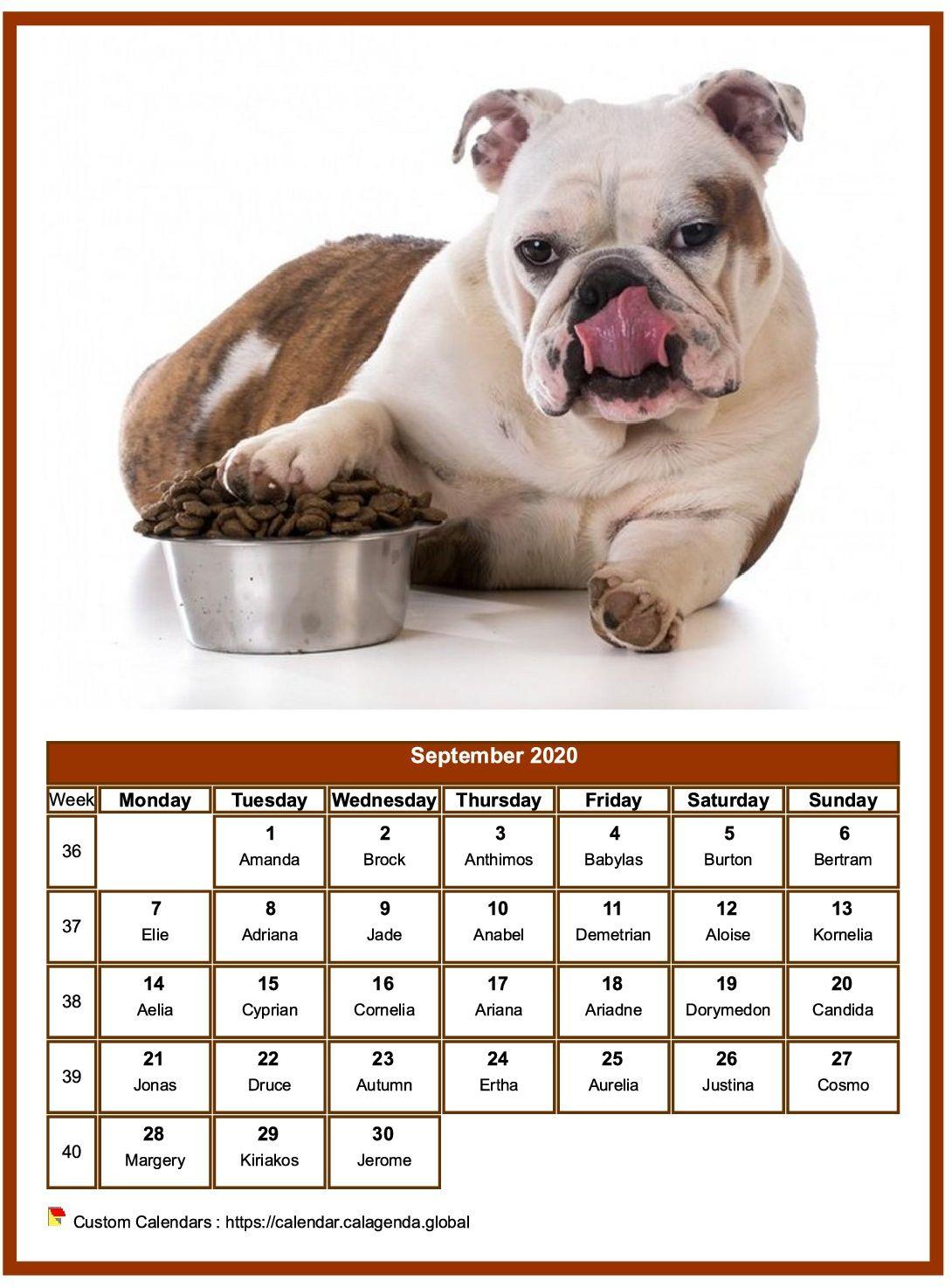 Calendar september 2020 dogs
