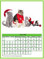 January calendar of serie 'cats'