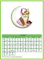 June calendar of serie 'cats'