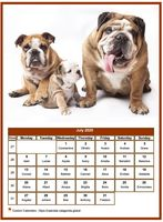 July 2020 calendar of serie 'dogs'