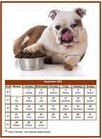 September 2020 calendar of serie 'dogs'