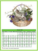 October calendar of serie 'cats'