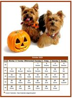 October 2020 calendar of serie 'dogs'