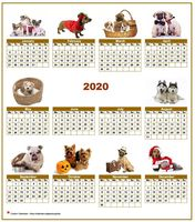 Annual 2020 calendar with 10 pictures of dogs