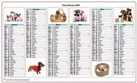 Semi-annual calendar 2020 dogs