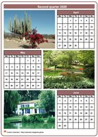 2020 quarterly calendar with one photo per month