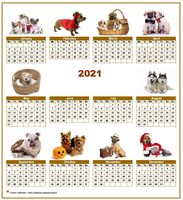 Annual 2021 calendar with 10 pictures of dogs