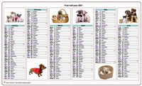 Semi-annual calendar 2021 dogs