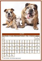 July 2023 calendar of serie 'dogs'