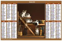 Annual 2022 calendar with cats