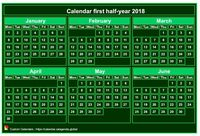 2017 semi-annual mini green calendar